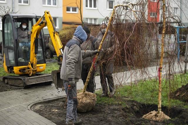Przy alei Niepodległości 29 w Częstochowie powstał kieszonkowy parkZobacz kolejne zdjęcia. Przesuwaj zdjęcia w prawo - naciśnij strzałkę lub przycisk NASTĘPNE