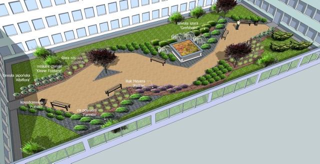 Projekt zagospodarowania terenów zielonych wokół szpitala przy al. Kraśnickiej