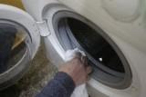 Grzyb w pralce – jak się go pozbyć i jak wyczyścić pralkę