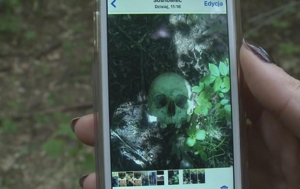 W lesie w Sosnowcu mężczyźni znależli ludzką głowę. Policja prowadzi intensywne działania śledcze