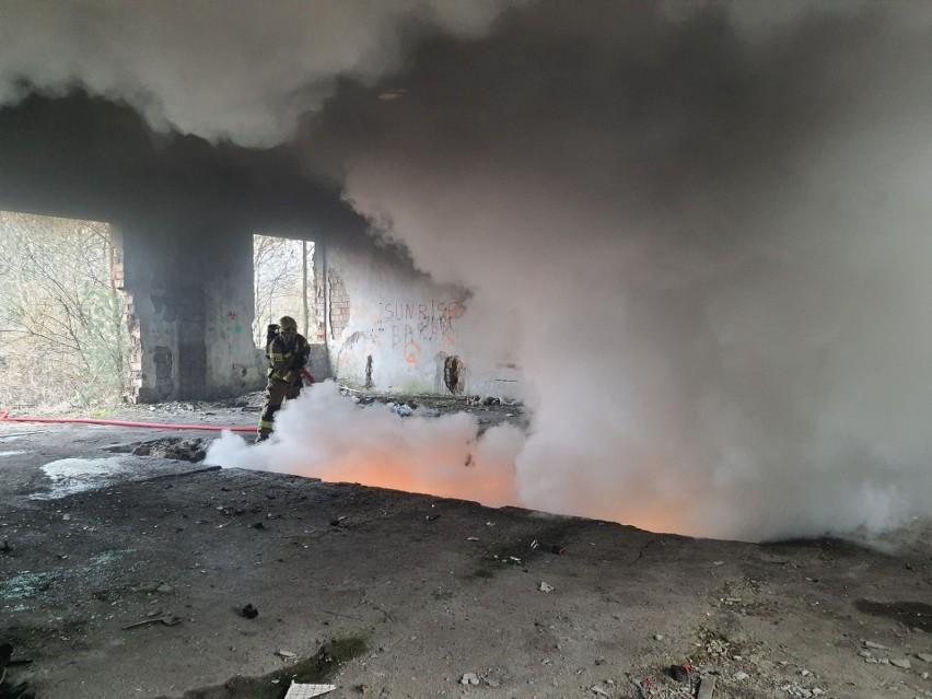 Podpalacz w Wielką Sobotę podpalił odpady, a inne...