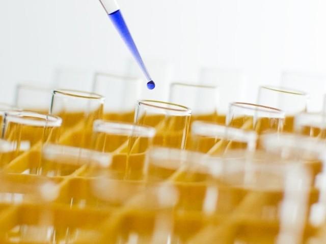 Nowoczesne laboratoria powstają na UMB