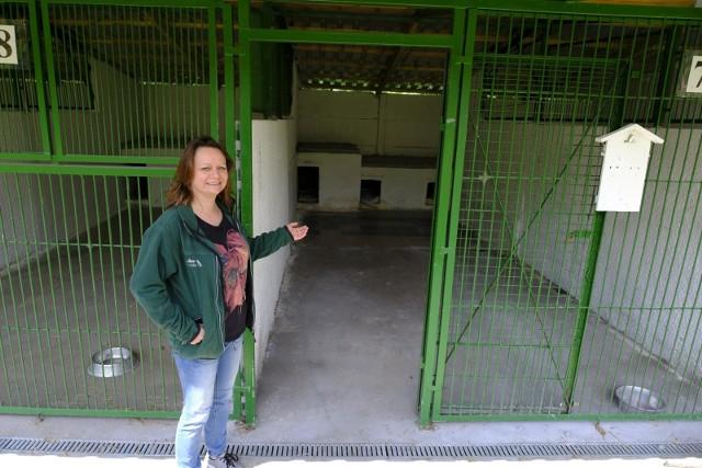 Toruńskie schronisko dla zwierząt jest gotowe by przyjąć psy ze schroniska z Radys (na zdjęciu kierownik schroniska Agnieszka Szarecka)