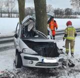 Śmierć na drodze pod Nowogardem. Samochód rozbił się na drzewie