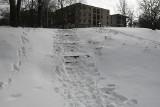 Będzie nowe zejście nad zalew w Kielcach. Schody przystosowane dla niepełnosprawnych