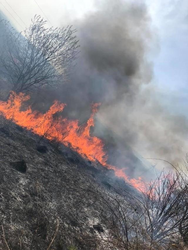 Pożar traw w gminie stryszów