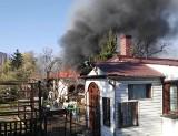 Duży pożar w pobliżu al. Kochanowskiego. Straż w akcji (ZDJĘCIA)