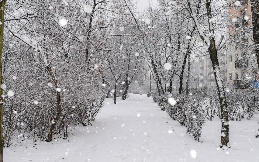 Łagodną zimę faworyzują także inne światowe modele...