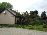 W Zadusznikach drzewo runęło na budynek przy szkole. Straty są duże