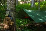 """Na majówkę zamiast do hotelu, na nocleg do lasu. 1 maja rusza program Lasów Państwowych """"Zanocuj w lesie"""""""