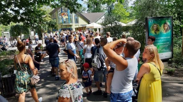 Zoo w Opolu. Powstanie nowe wejście do ogrodu zoologicznego. Ma kosztować ponad pół miliona złoty