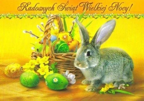 życzenia Wielkanocne Oryginalne I Krótkie Sms Najlepsze