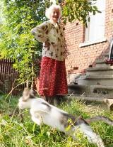 Gmina odmawia pomocy staruszce, która zajmuje się bezpańskimi kotami