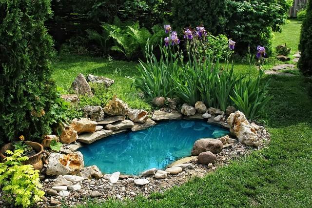 Oczko wodne w przydomowym ogrodzie - jak je zbudowaćOczko wodne w przydomowym ogrodzie - jak je zbudować z betonu