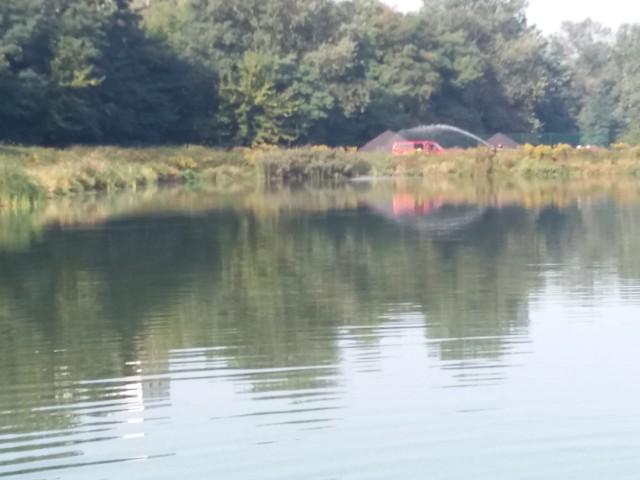 Ciało kobiety znajdowało się dwa metry od brzegu. Z wody wyjęli je wezwani na pomoc strażacy. Czytaj więcej na następnej karcie