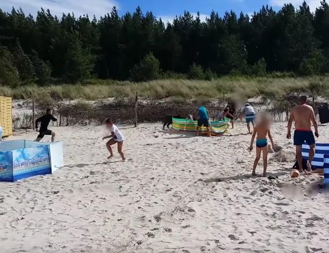 Dzik zaatakował plażowiczów na plaży w Karwi. Zwierzę taranowało ludzi [WIDEO]