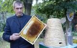 Święto Pszczoły. Twardy pszczelarz - znosi do 20 użądleń dziennie