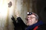 Trwa liczenie nietoperzy w podziemiach Międzyrzeckiego Rejonu Umocnionego [ZDJĘCIA, WIDEO]