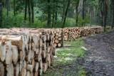 Sprzedaż drewna to kolejna klęska? Lasy zaprzeczają