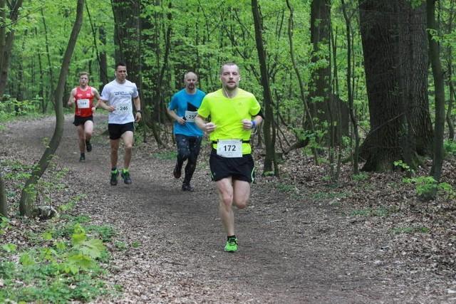 Bieganie po Lesie Łagiewnickim jest bardzo przyjemne