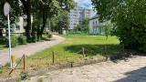 Brutalny gwałt i zabójstwo pielęgniarki w Białymstoku. Podejrzany zatrzymany w Wielkiej Brytanii (zdjęcia)