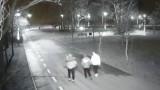 Pabianice. Wyrwał znak drogowy i spacerował z nim obok stawu. Uchwyciły go kamery ZDJĘCIA