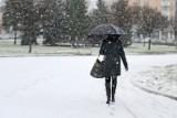 Kiedy spadnie śnieg w Poznaniu i Wielkopolsce? Znamy wstępne prognozy na początek zimy (14 listopada 2020 r.)