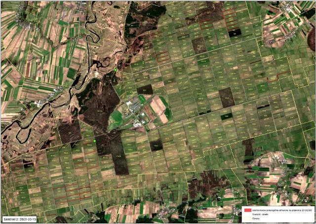 Zdjęcia satelitarne pogłębionych rowów na Bagnie Wizna