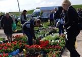 Targowisko miejskie w Suwałkach. Stoiska z kwiatami przeżywają oblężenie [Zdjęcia]