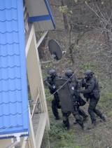 Polowali na bandytę, upolowali psa... Po akcji w agencji towarzyskiej, policjanci zabili psa