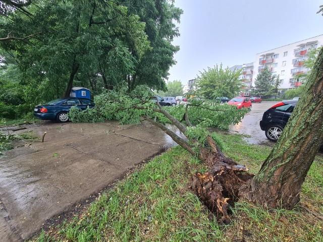 Burze przechodzą na Kujawsko-Pomorskiem. W Toruniu powalone drzewa, zalany parking i piwnice