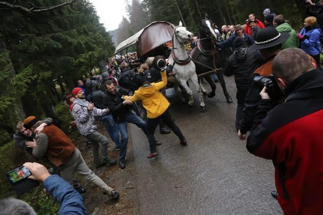 Przepychanki obrońców koni na drodze do Morskiego Oka z fiakrami. Zdjęcia z listopada 2014 roku.