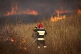"""Wiosną rośnie zagrożenie pożarowe przez wypalanie traw. """"Grożą za to surowe sankcje karne oraz cofnięcie dopłat"""""""