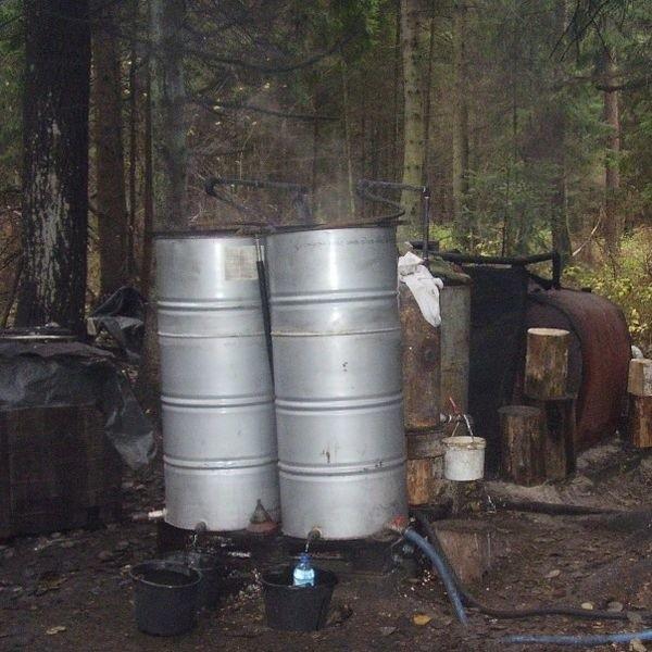 Bimbrownia znajdowała się w podgródeckim lesie.