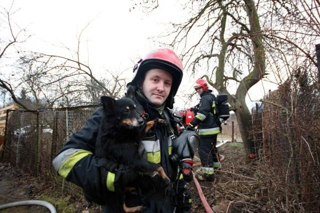 1 lutego palił się dom przy ulicy Kolonia Ochota w Gdańsku