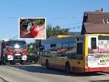Groził, że wysadzi miejski autobus w powietrze! Miał 5-kilową butlę gazową. Chwile grozy w podkieleckiej Bilczy [ZDJĘCIA]