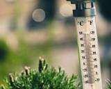 Majówka 2020 PROGNOZA POGODY. Szokujące prognozy na weekend majowy. Temperatura zaskoczy! Prognoza pogody na majówkę 30.04.20