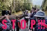 Tatry: Nie pomagają apele i prośby. Turyści dalej karmią jelenia z Morskiego Oka. Zimą czeka go śmierć?