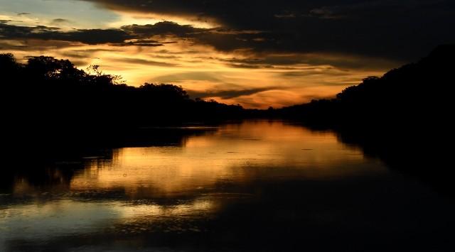 Rezerwat Mamiraua w stanie Amazonas w Brazylii