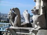 Francja. Katedra Notre Dame skażona ołowiem na skutek pożaru. Poszkodowane dzieci, prace nad odbudową wstrzymane