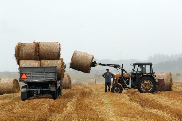 W 2015 r. ubezpieczyło się 143 tys. rolników