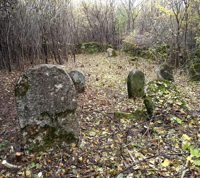 Akcja sprzątania cmentarza żydowskiego w Małogoszczu.