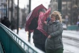 Silny wiatr w Bydgoszczy i regionie w czwartek, 22.04.2021. Ostrzeżenie IMGW i Bydgoskiego Centrum Zarządzania Kryzysowego
