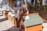 Budy dla organizacji z województwa łódzkiego, pomagającym bezdomnym zwierzętom