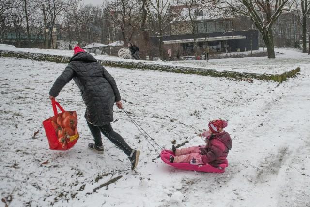 We wtorek, 12 stycznia w Poznaniu spadł śnieg. Po raz pierwszy w tym roku na ulicach Poznania zrobiło się biało. Na dworze można spotkać więc dzieci jeżdżące na sankach i lepiące bałwany, nawet dorośli bawią się śniegiem! Na spacer wybrał się także nasz fotoreporter, który sfotografował stolicę Wielkopolski w śniegu.
