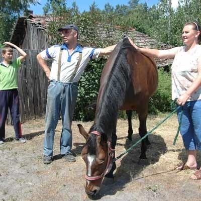 Majka (bo wzięta pod opiekę w maju) stała się koniem rodzinnym Górnych. Opiekują się nią i dorośli, i dzieci. Wszyscy są zadowoleni. Klacz chyba też.