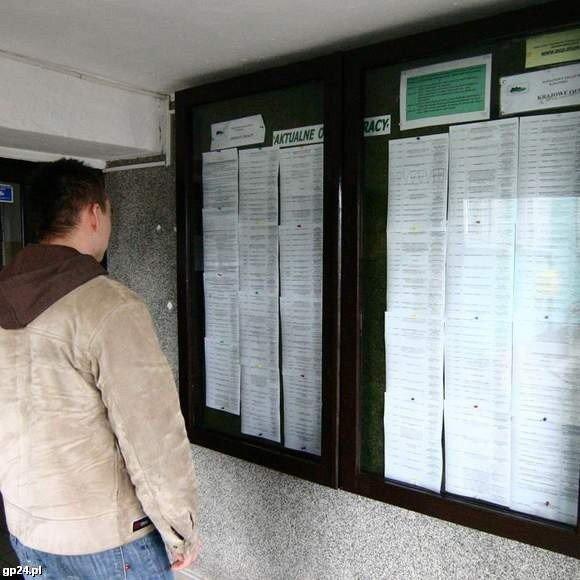 Tu Czeka Praca Najnowsze Oferty Z Urzedów Pracy Gazeta Lubuska
