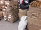Szok! Lubuska Krajowa Administracja Skarbowa znalazła w lesie 2,5 tony tytoniu. Sprawcy tłumaczyli, że przyjechali ukraść drewno...