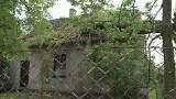 Wiatr powalił drzewo na dach domu (WIDEO, ZDJĘCIA)