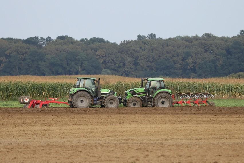 Każdy rolnik, który chce odzyskać część pieniędzy wydanych na olej napędowy używany do produkcji rolnej powinien zbierać faktury VAT
